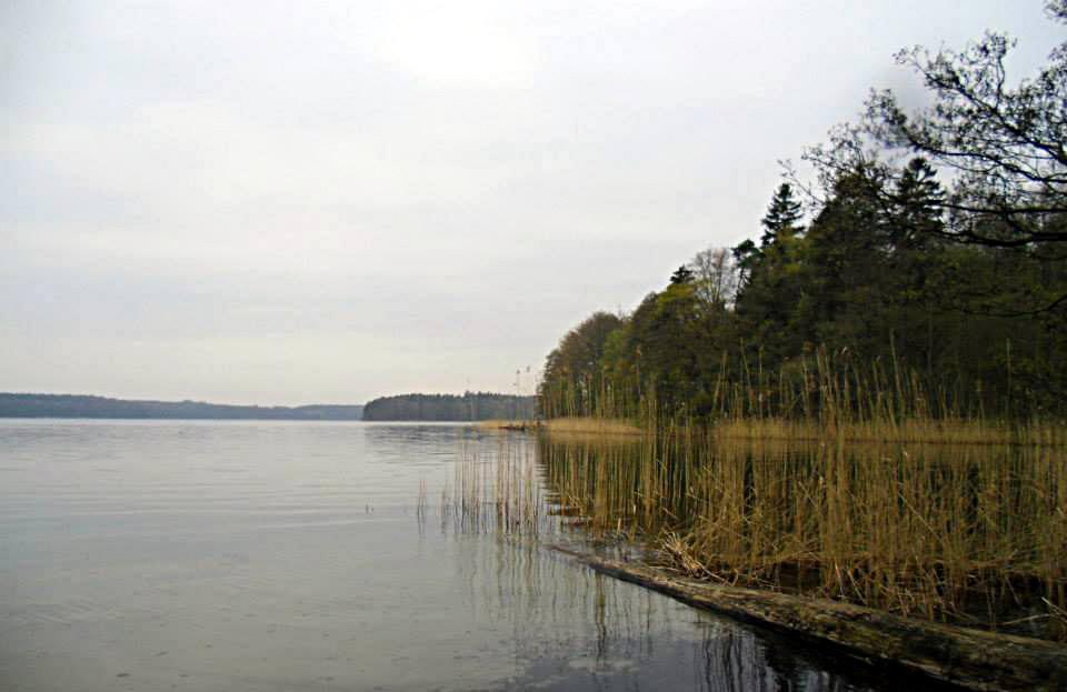 Tagesausfahrt zum Stechlinsee – 25. Mai 2017